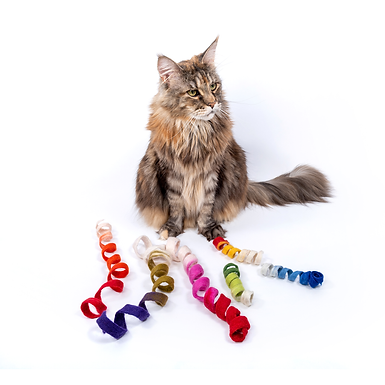 Felted Spinny Spiral Cat Play Toy