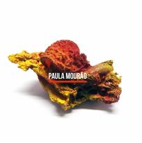 Paula Mourão - Brasil