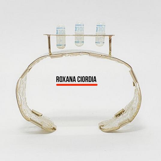 Roxana Ciordia - Argentina