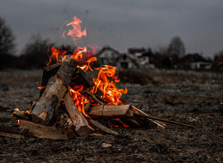 What to do in a bushfire