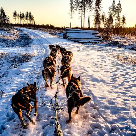 Finland: A Land of Magical Wonder