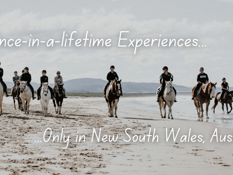 18 Once-in-a-lifetime Experiences that Await You in New South Wales, Australia