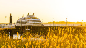 Themed Cruises Worth Setting Sails For