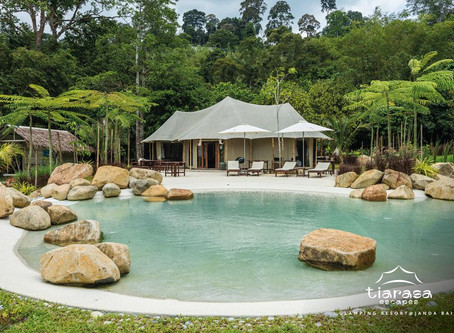 The Art of Glamping in Malaysia