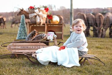 Uxbridge Christmas Photographer