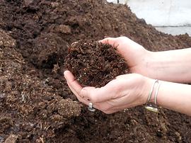 compost soil landscaping