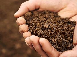 Soil sol