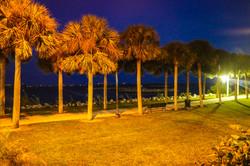 Lawn at Night