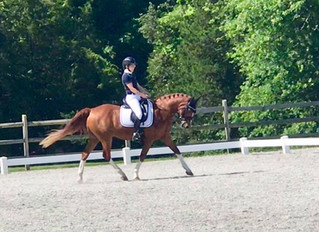 Dressage at Red Tail June II