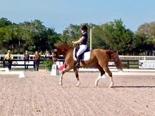 Palm Beach Dressage Derby