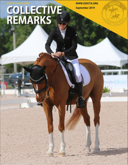 A Para Equestrian's Story of Resilience