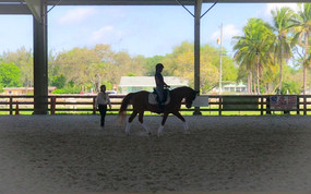 USEF ParaDressage Coach Program