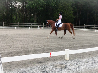 Dressage at Red Tail Farm Day 1
