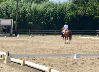 Suddenly Farm Dressage Show