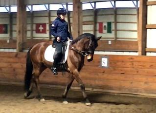 Sparklez the Wonder Pony