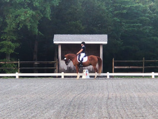 Dressage at Red Tail Farm Day 2