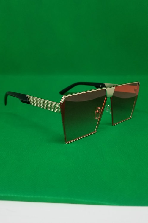 Sunglasses Colllection