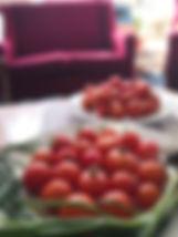 Tomatoes 300818.jpg