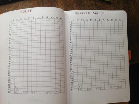 Mon BuJo de feignasse  : les tableaux de Tracker pour l'année (7)