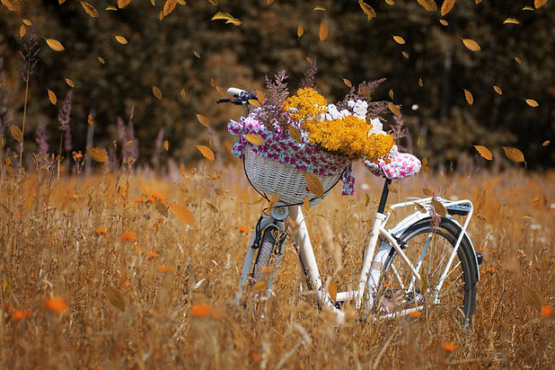bicycle-with flowers.jpg
