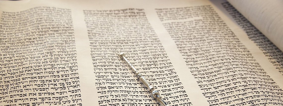 Torahimage.jpg