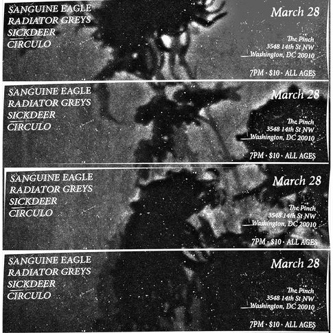 Sanguine Eagle flyer