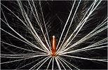 Kaleidoskop-2011-Gerhardt_5.jpg