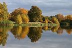 Herbstzeit-19-500px.jpg