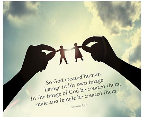 Genesis 1:27 Human Beings Are Created In God's Own Image; Male And Female. What Happens in Genes