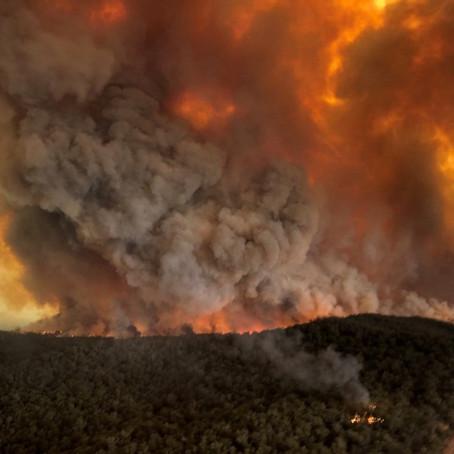 Bushfire Financial Relief Info