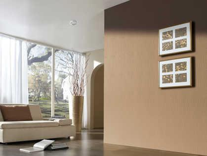 עיצוב קירות.jpg