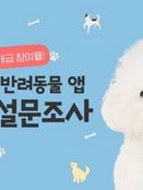 퀴즈톡·블록펫, '반려동물 앱' 설문조사 결과 발표