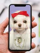 세계 최초 반려동물 펫신원인증 디앱 '블록펫'