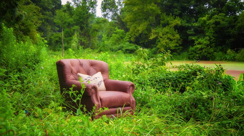 4786L Chair Stallone Branch.jpg