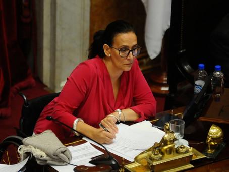 Michetti insiste en un serio debate del aborto en el Senado