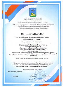 Сертификат квесты.JPG