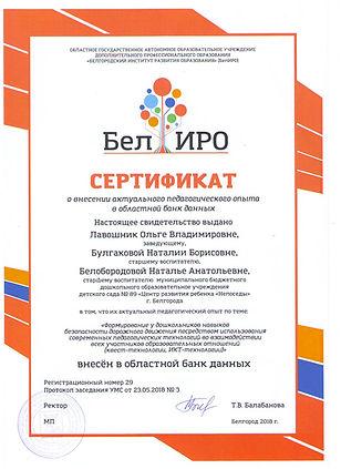 Сертификат ПДД область.jpg