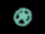 sanddollar solo green transparent backgr