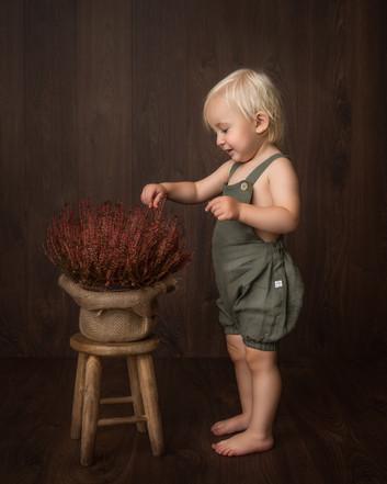 Portrett av ett år gammel gutt. Han har grønn shorts med seler i lin. Han utforsker en lyng som er plassert på en krakk foran ham, fineart. Bilde tatt av Tina Brikland Borsheim, Studio Brikland