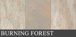 burningforest_1280