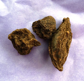 Hoodoo Herbs and Roots