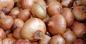 Magical Food - Onions