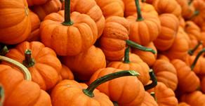 Magical Food - Pumpkins