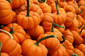 Magical Food - Pumpkins