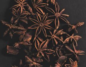 Magical Food - Star Anise