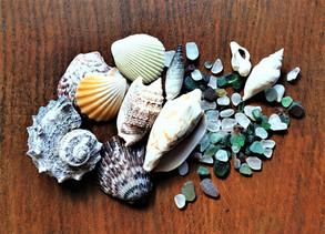 Magic: Shells, sand and sea glass