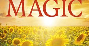 Bring on the Sun Magic!