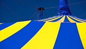 Meditation Prompt: Circus