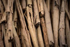 Magical Food - Cinnamon