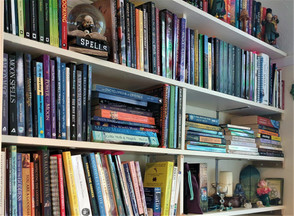 A Witch's Book Shelves